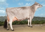 Double W Brookings Delight 3rd Lact  Owned by Double W Farm, The Wailes, Colorado